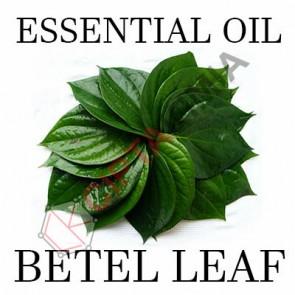 Betel Leaf EO