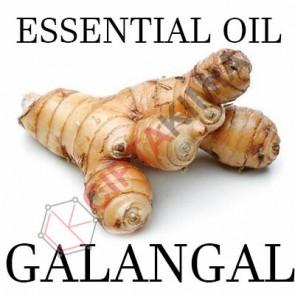Galangal EO
